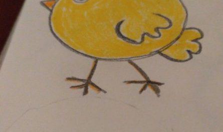 Как нарисовать цыпленка для детей